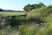 Farmland of Purley Farm