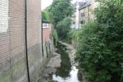 Lee: Quaggy River