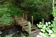 Unsafe wooden bridge