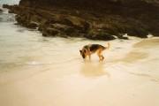 Clean sand on Clashnessie beach