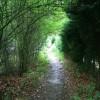 Footpath to Long Eaton