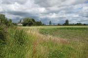 Farmland, Down Hatherley