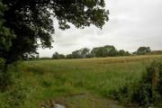 Farmland near Berkeley Heath