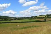 Pastures, Radnage