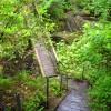 Footbridge Over Abhainn Teithil Gorge