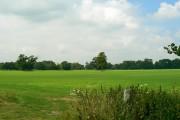 Farmland, Faringdon Park