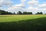 Huish Farmland