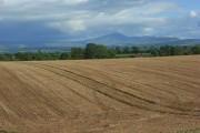 Farmland, Raby