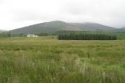 Damp farmland, Loanreoch