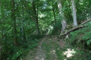 Offa's Dyke Path through Candy Wood