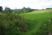 Farmland east of Chicksgrove Wood
