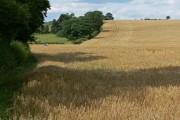 South Nottinghamshire farmland