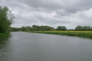 River Thames above Northmoor Lock