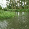 River Thames near Buckland