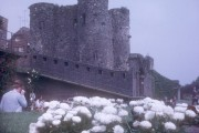 Ypres Tower and flowers, Rye, 1967