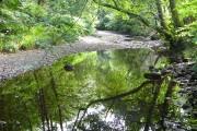 Abhainn Teithil at Sutherlands Grove