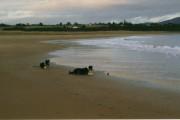 North Dornoch Beach