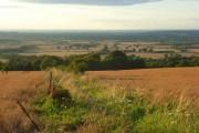 Farmland above Ashbury