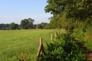Pastures, Sonning