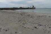 Tayinloan: beach between piers