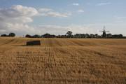 Stubble field near Micklemere