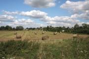 Harvested field near Lakenheath