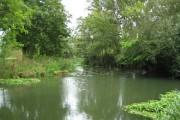 River Ember near Weston Green