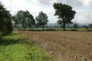 Farmland beside the River Severn, Maisemore