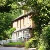 Cottages in Ockham Lane