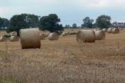 Farmland off Kirkby Road