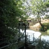 The River Wey at the boundary of RHS Wisley