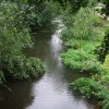 River Stort