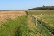 Farmland, East Dean