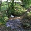 Path across stream, Cefnpennar
