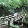 Footbridge crossing the Grinds Brook