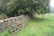 Field edge, Bonnington