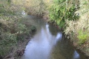 River Rib at Wadesmill