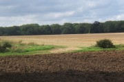 Panoramic view across fields towards Cutler's Grove