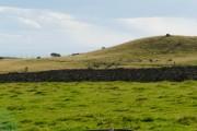 Farmland near Portgower