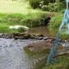 Bridge of Dillay Brook