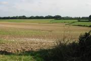 Farmland to the E of Roman Road