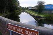 Beechtree Road View