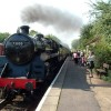Steam engine and train, Ferry Meadows station
