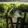 Footbridge east of Norbridge