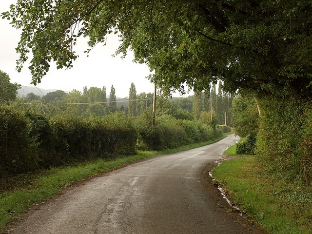Lane at Merrow