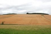 Farmland at Frendraught