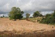 Balgaveny