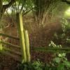Path near Stonehouse