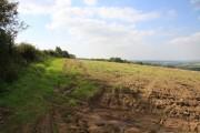 Farmland near Highridge