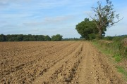 Ploughed land near Frieth